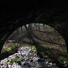 10 Inside C&O Canal Culvert #89