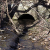 16 Historic C&O Canal Culvert #90 (outflow portal)