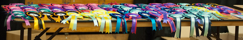 You could chose a rosette of any colour!