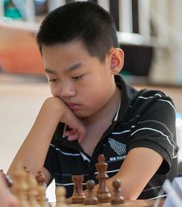 Zheming Zhang