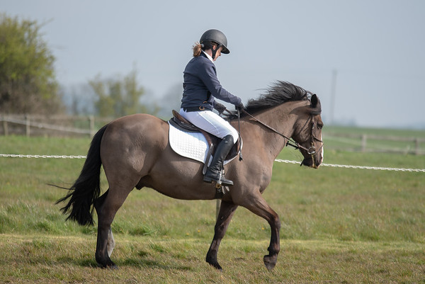 04Cheval4927
