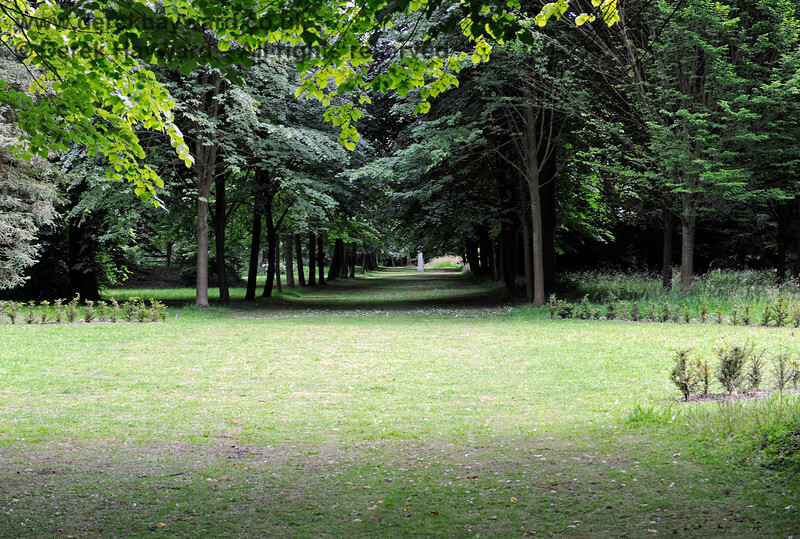 The Long Walk, Chevening Estate. 22.06.2014  9606