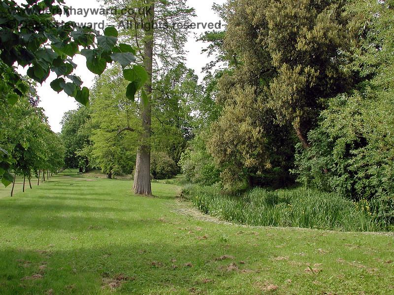 The Stream adjacent to the Long Walk, Chevening Estate. 02.06.2002