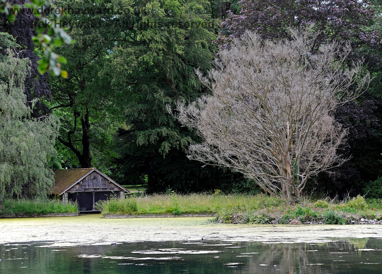 The Lake, Chevening House.  22.06.2014  9649