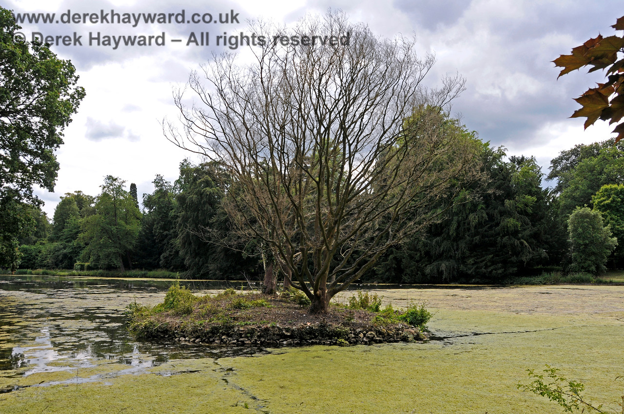 The Lake, Chevening House.  22.06.2014  10691