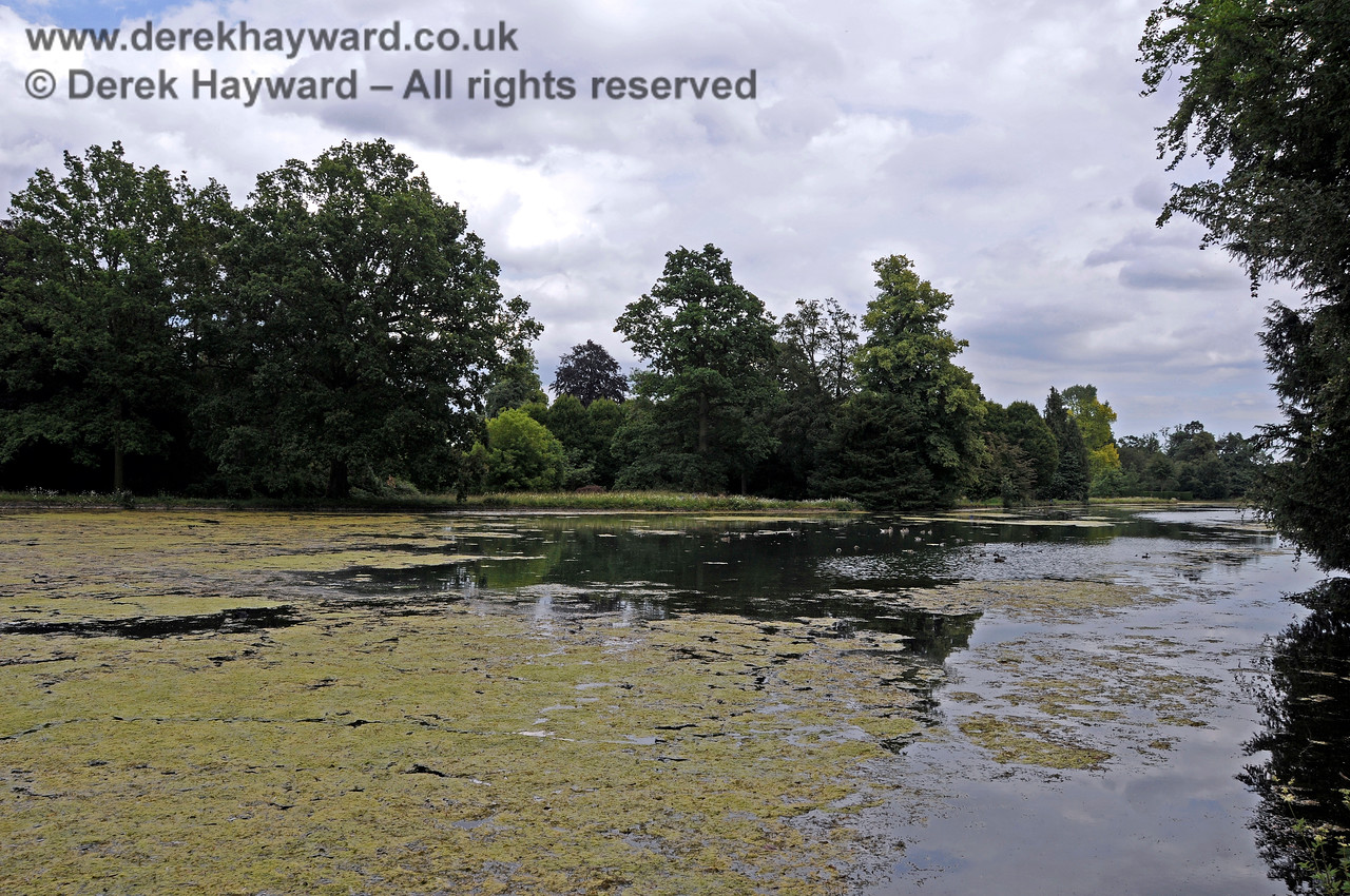 The Lake, Chevening House.  22.06.2014  10733