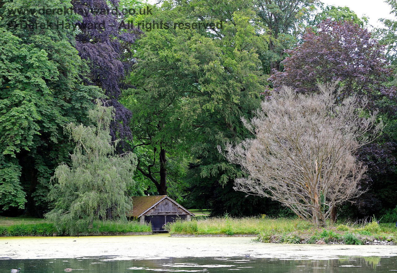 The Lake, Chevening House.  22.06.2014  9650