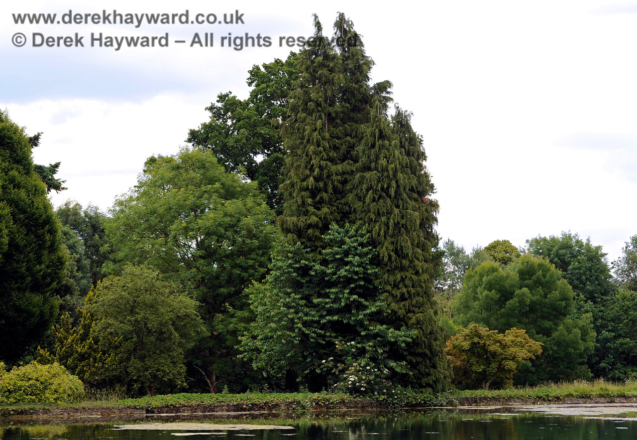 The Lake, Chevening House.  22.06.2014  9642