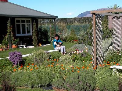 My idyllic farm life in New Zealand