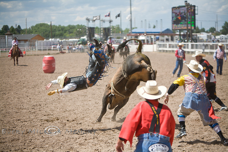 Cole Echols Getting Ejected off the Bull - Cheyenne Frontier Days Rodeo - Photo by Pat Bonish