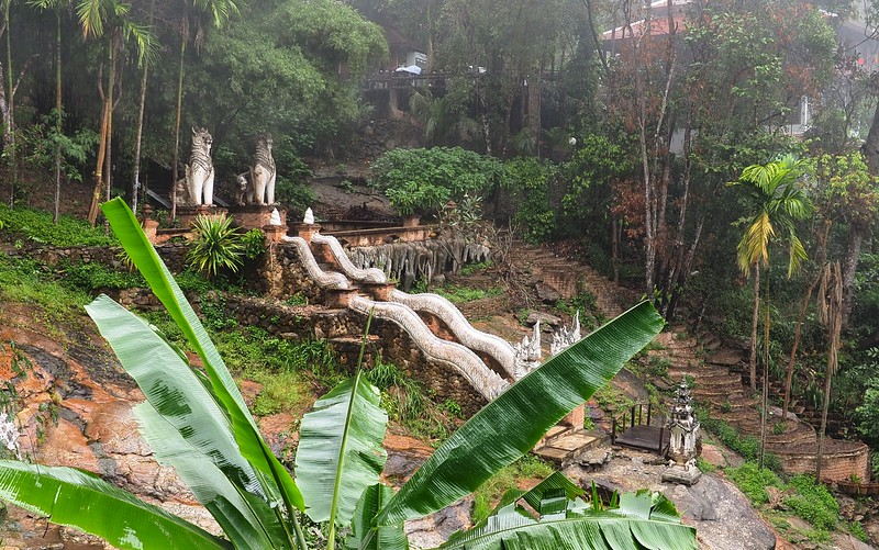 Wat Palad, a temple hidden in the jungle in Chiang Mai
