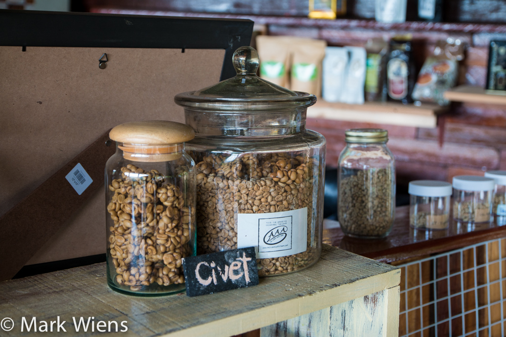Civet cat coffee