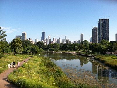 View of Chicago Sky Line from Lincoln Park