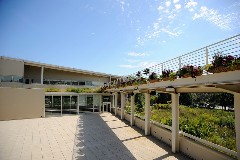The patio at the Peggy Notebarte Nature Museum, located in Lincoln Park, blends distinctive architecture with its natural environment.