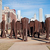 Agora public art sculptures Grant Park winter