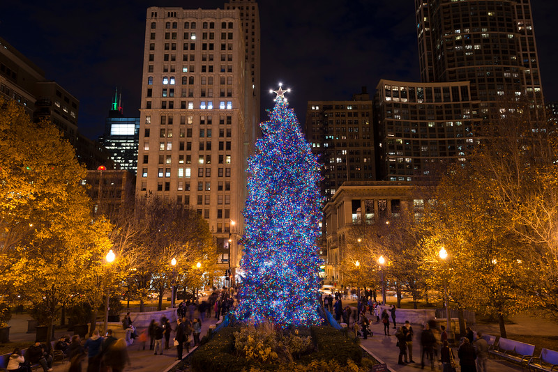 Christmas tree in Millennium Park holiday lights night