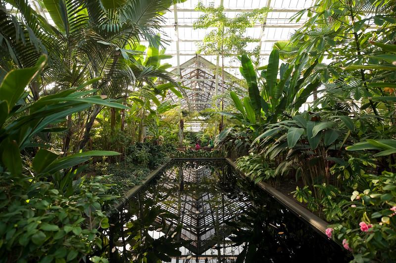 Chicago Park District Garfield Park Conservatory