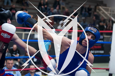 Semifinals, Saturday March 25, 2017 IN THE RING