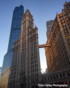 Wrigley Building, Evening Light