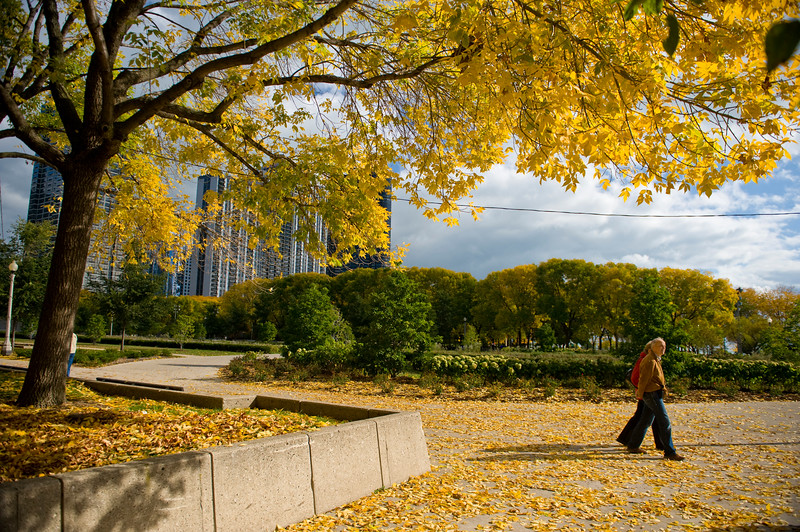 Seniors stroll through Grant Park near Daley Bicentennial Plaza in the Fall.