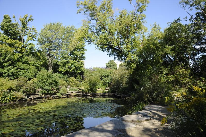 Lincoln Park Lagoon, which runs along Lake Shore Drive near Fullerton Avenue.