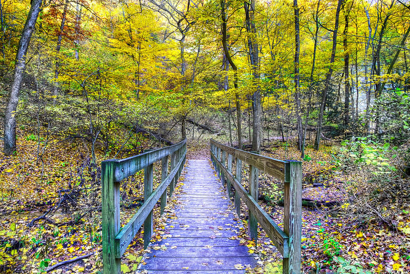Path to St. Louis Canyon at Starved Rock