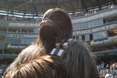 Even Wookiees observe the national anthem. #StarWarsDay