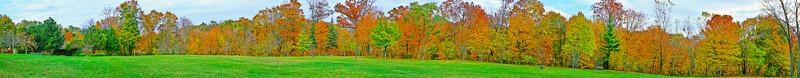 Fall Color Highland Park