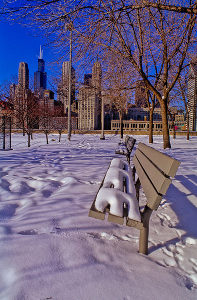 Chicago Skyline in Winter