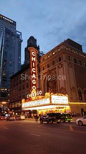Gayle Thody - Chicago