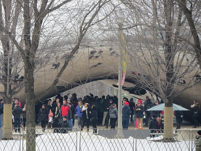 Millenium Park, Feb., 2015