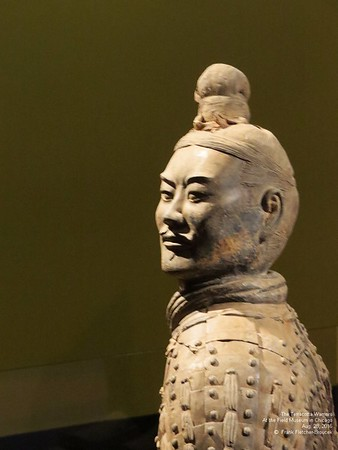 Terracotta Warriors Exhibit part 2