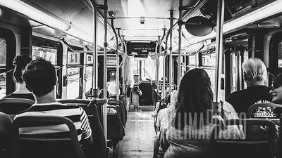 CTA Bus Rides