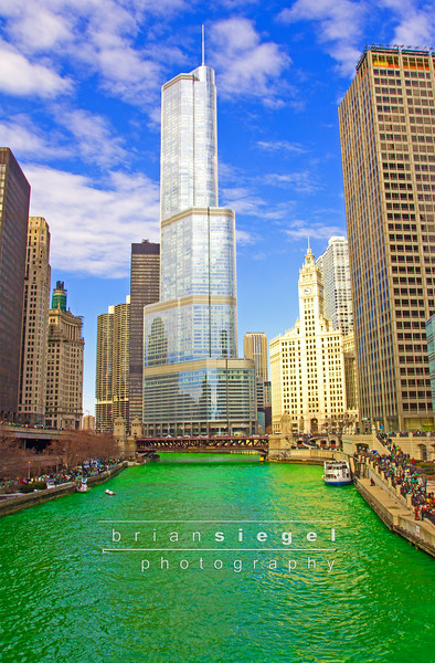 St. Patricks Day Chicago!