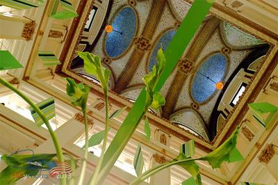 Looking up at Marshall Fields