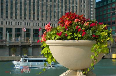 Flower urn across from the Merchandise Mart