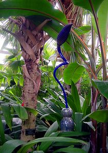 Dale Chihuly Glass sculpture at Garfield Park Conservatory, Chicago