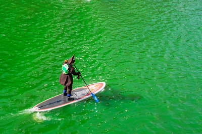 Greening of the Chicago River