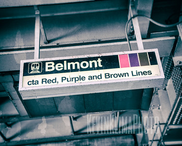 Belmont - CTA Red, Purple and Brown Lines