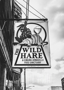 The Wild Hare & Singing Armadillo Frog Sanctuary