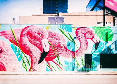 Pink Flamingo Mural