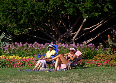2006-08-07  Sunbathing in the Flower Garden, Lincoln Park