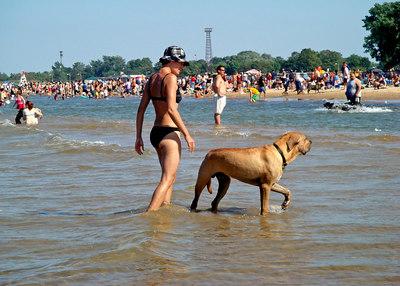 Mondog beach