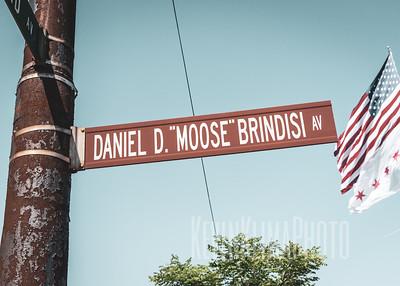 """Daniel D. """"Moose"""" Brindisi Ave"""
