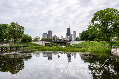 Skyline from Lincoln Park Zoo 2