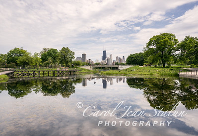 Skyline from Lincoln Park Zoo