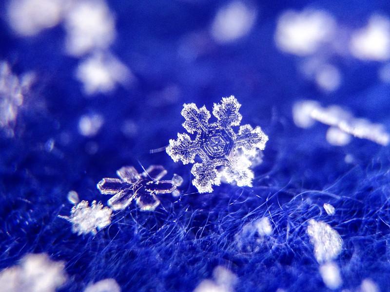 Snowflake on Blue Fleece