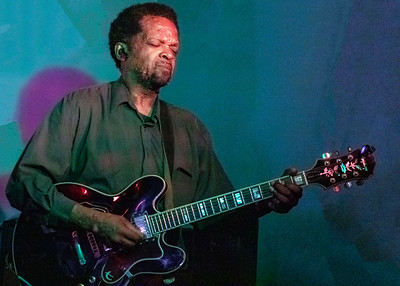 Tony Brown | Low-reen and the Maxwell St. Market Blues Band