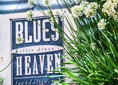 @ Chicago Blues News/Michael Murphy
