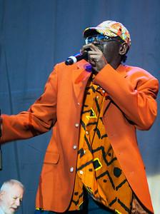 2014 Chicago Blues Fest   Tribute to Sonny Boy Williamson, Petrillo